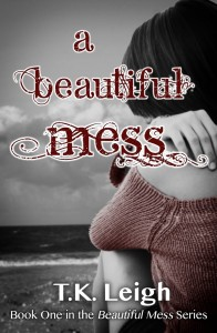 beautiful mess book review