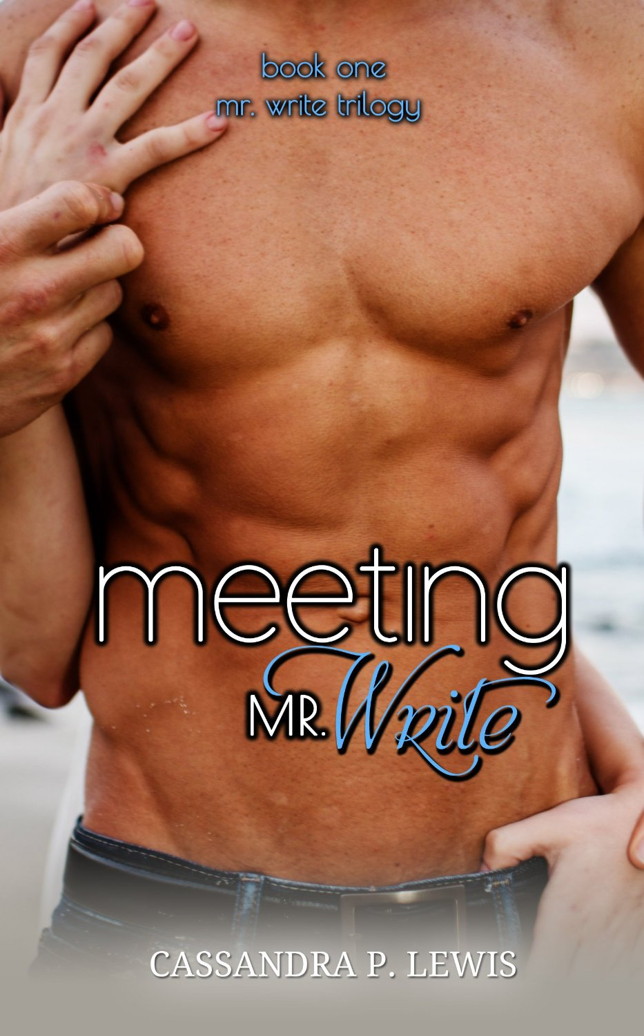 Meeting Mr Write Trilogy Book 1 By Cassandra P Lewis