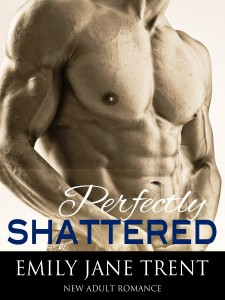 perfectly shattered book review